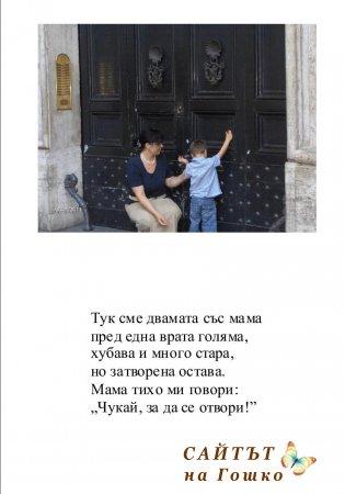 Малка книжка за Гошко